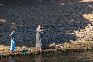 Egypt 2020, Nil Landscape. Travel photography