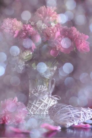 Blumenwelten von Iryna Mathes Fotografin