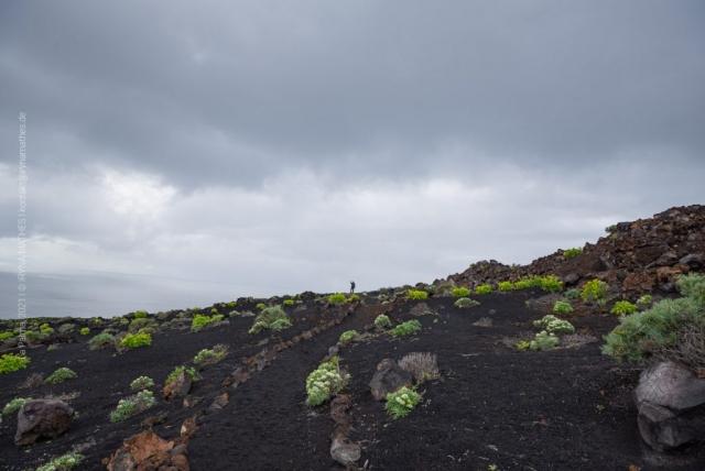 Vulkanlandschaft L Palma