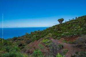 La Palma, Kanarische Insel. Vulkan Landschaft