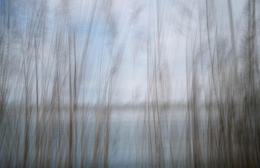 Natur abstrakt. Lichtmalerei, Iryna Mathes. Digitaler Art